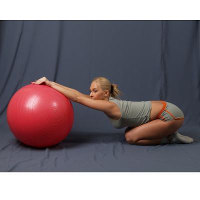 L 0765b_Мяч гимнастический c АБС для фитнеса 65см в коробке с насосом(красный)